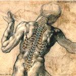 La colonna vertebrale: cose da sapere per proteggere l'ammortizzatore del nostro corpo