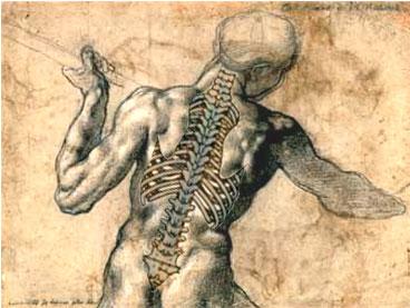 Sporgenza di dischi di un massaggio di trattamento di spina dorsale